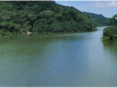 寧波郭巨紫薇岙水庫--生態治理工程