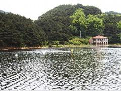 江西九江廬山如琴湖--生態治理工程