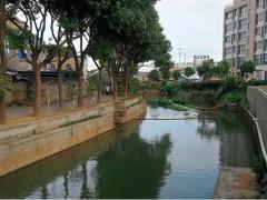 寧波市北侖區高塘街漕河--生態治理工程